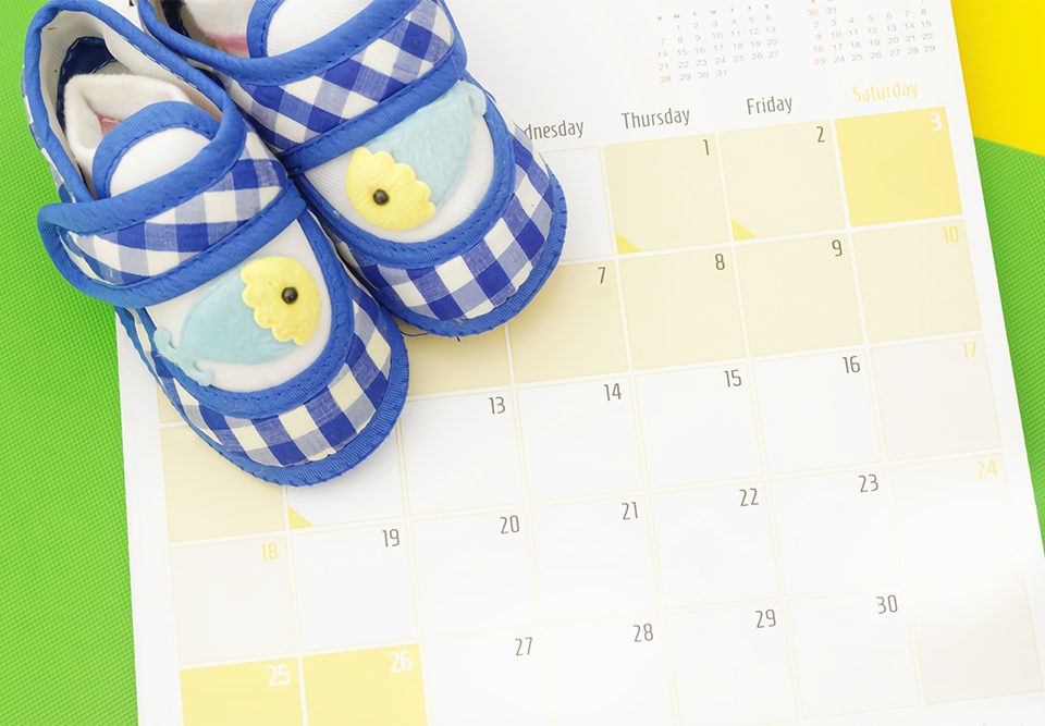 IVF due date calculator